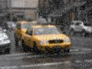 NY_rain